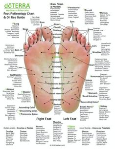 Hand & Foot reflexology chart indicating possible essential oil uses for the var. - Hand & Foot reflexology chart indicating possible essential oil uses for the various hand and feet r - Essential Oil Uses, Doterra Essential Oils, Essential Oils For Tinnitus, Foot Chart, Reflexology Massage, Foot Reflexology Chart, Reflexology Points, Massage Therapy, Massage Tips