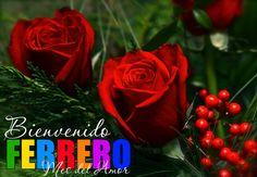 /Bienvenido-Febrero-Mes-del-Amor-003.png