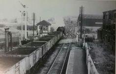 Steam Railway, British Rail, Nottingham, Railroad Tracks, Trains, Roots, History, Model, Historia