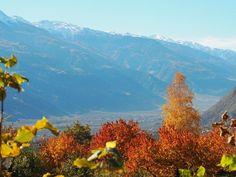 Der goldene Herbst im Meraner Land ist ein wahres Naturschauspiel