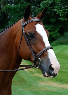 "The Red Barn Fusion Hunter Bridle with a Crank Noseband features a one piece soft padded contoured uni-crown headstall for the ultimate in comfort to the horse's poll. 1/2"" cheekpieces, 1"" padded roun"