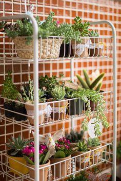 Jardim vertical lindo da Alice do blog Jardim do Coração! Link: http://www.jardimdocoracao.com.br/casa-e-decoracao/uma-varanda-pequena-fofa-e-cheia-de-charme/ Succulent Terrarium, Cacti And Succulents, Planting Succulents, Planting Flowers, House Plants, Garden Plants, Balcony Garden, Indoor Garden, Home And Garden