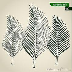 palm leaf tattoo - Google Search