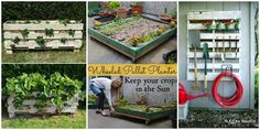 Pallet Gardening Ideas-DIYHowto Create A Pallet Garden (Video)