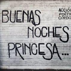 Buenas noches princesa #Acción Poética Argentina #accion