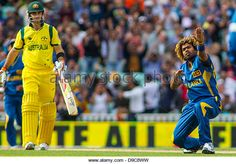 London, UK. 17th June, 2013. Sri Lanka's Lasith Malinga celebrates taking the wicket of George Bailey during the ICC Champions Trophy international cricket match between Sri Lanka and Australia at The Oval Cricket Ground on June 17, 2013 in London, England. (Photo by Mitchell Gunn/ESPA/Alamy Live News) - Stock Image