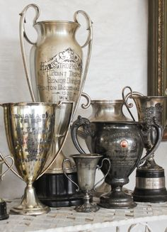 Collection of trophies-- Fall 2016 Vintage Market Days - The First Day