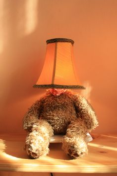 Lamp Bear, old teddy bear, old lamp shade, mood lighting, Led lighting, desk lamp... Punk Trek www.punktrek.com www.facebook.com/punktrek Old Teddy Bears, Brown Teddy Bear, Desk Lamp, Table Lamp, Old Lamp Shades, Trek, Mood, Facebook, Lighting