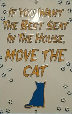 If you want the best seat in the house , move the cat !