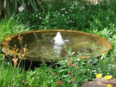 Bubbling bird bath.