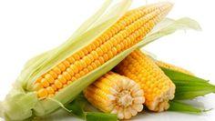 Se está a fazer uma dieta para perder alguns quilinhos, é importante que varie com uma ementa bem rica em fibras. Siga estes truques! #Bem_Estar_Dieta_Rica_em_Fibras #dicas #truques #bem_estar #dieta #fibras #alimentação