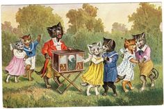 Postcard Cats Dance to Organ Grinder Thiele or Similar O G Z L
