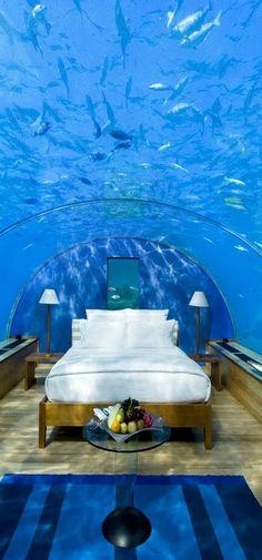 Im Conrad Maldives Rangali Island auf den Malediven speist man nicht nur unter Fischen, sondern bettet sich da auch.
