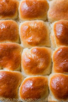 Soft, fluffy, tried & true honey butter dinner rolls recipe on sallysbakingaddiction.com-- step by step photos included!