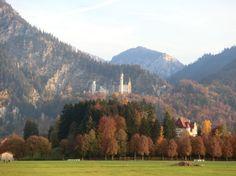 Schloss Neuschwanstein http://www.hotel-fuessen.de/de/blog/schloss-neuschwanstein.html
