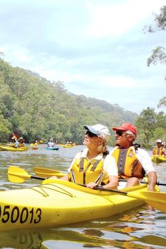 The best things to do in Sydney: events, attractions, festivals and must-see places to visit, all in one spot Stuff To Do, Things To Do, Kayaking, Sydney, Places To Visit, Bucket, At Least, Life, Things To Make