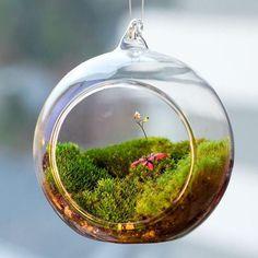 Glass Globe Terrarium Vase
