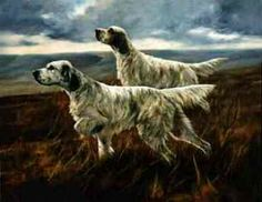 English Setters by John Trickett (UK)