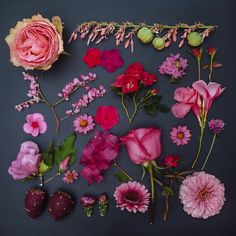 In this series, entitled The Garden Collection, photographer Emily Blincoe creates unique flower arrangements with a creative twist. We recently enjoyed her Sugar Series and, now, she has applied her. Art Floral, Pink Flowers, Beautiful Flowers, Flower Petals, Dried Flowers, Image Nature Fleurs, Unique Flower Arrangements, Illustration Blume, Blog Deco