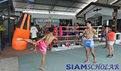 Sudsakorn Sor Klinmee at the Sor Klinmee gym in Pattaya. Fight Gym, Siam, Gym Interior, Pattaya Thailand, Boxing Gym, Muay Thai, Martial Arts, Basketball Court, Camping
