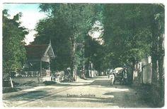 Darmo th 1915