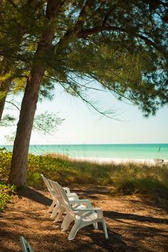 Longboat Key - this looks like a nice spot to sit.