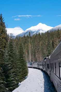 A leading Canadian tour operator specializing in Canadian Rockies Train Tours, Canada Self Drive Holidays, Canada Train Vacations, Eastern Canada Tours Canada Tours, Canada Travel, Train Vacations, Coach Tours, Train Tour, Atlantic Canada, Alaska Cruise, Canadian Rockies, Ways To Travel