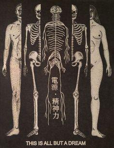 Fuck Yeah Medical Diagrams — spiritd3sire: Vesica Piscis vulva (by El Circulo...