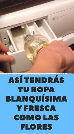 Así tendrás tu ropa blanquísima y fresca como las flores Diy Home Cleaning, Toilet Cleaning, Cleaning Recipes, House Cleaning Tips, Casa Patio, Power Clean, Helping Cleaning, Laundry Hacks, Clothing Hacks