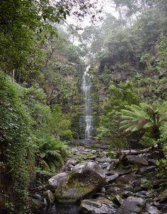 Erskine Falls, Great Ocean Road, Australia