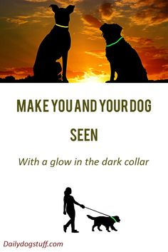 keep you and your canine companion safe from harm during night time walks. Here's a list of some of the best glow in the dark collars on the market. Dog Gadgets, Dog Stuff, Night Time, The Darkest, Safety, Glow, Walking, Parenting, Pets