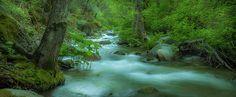 Panoramic of boulder creek © Michele James #photographer #photography #photo