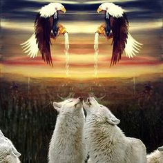 Wolf Images, Horses, Night, Wallpaper, Animals, Art, Art Background, Animales, Wolf Pictures