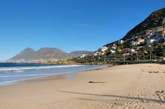 Discover the world through photos. Baboon, Cape Town, Small Towns, Beaches, Landscapes, African, City, World, Water