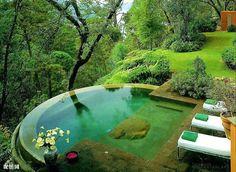 cool, green, hot tube, nature