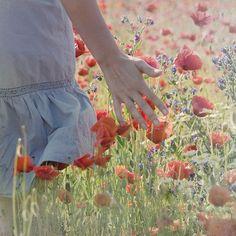 walking through fields of flowers...