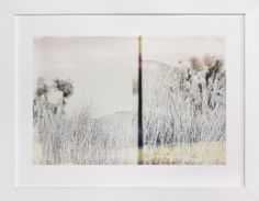 """""""Joshua Tree"""" - Art Print by Kaitlin Rebesco in beautiful frame options and a variety of sizes."""
