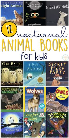 If you are planning a nocturnal animal theme for your classroom or homeschool this fall, you'll definitely want to check out these great nocturnal animal picture books! Lots of great titles and ideas for incorporating comprehension and writing skills too. Animal Activities, Book Activities, Sequencing Activities, Toddler Activities, Nocturnal Animals, Owl Pet, Preschool Books, Preschool Ideas, Libros