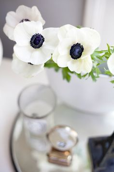 I love anemones. I had them in my wedding bouquet :)