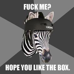 Like the box...heh heh heh...