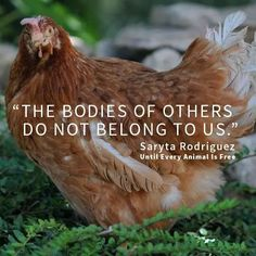 make the connection: the bodies of others do not belong to us; please go #vegan