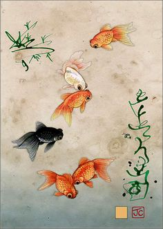 Five Fantailed Fish - Bug Art greeting card
