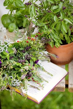 Bridal bouquet from my garden herbs - mint, rosemary, basil...