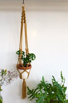The perfect addition to your home is also something you'll make yourself. Get the macrame spiral knot plant hanger course + kit and you'll have everything you need to get started on your macrame journey right away. Macrame Plant Hanger Patterns, Macrame Plant Holder, Macrame Plant Hangers, Macrame Patterns, Plant Holders, Plant Hanger Diy, Diy Projects For Beginners, Macrame Design, Macrame Projects