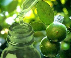 Herbalism, Fruit, Makeup, Soaps, Oil, Herbal Medicine, Make Up, Beauty Makeup, Bronzer Makeup