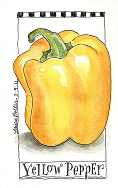 Sketchbook  Watercolor Journal Style Lesson One by lbolter, via Flickr