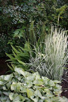 + blad van plant onderaan de foto