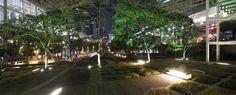 夜散歩のススメ「品川セントラルガーデンの庭園」東京都港区