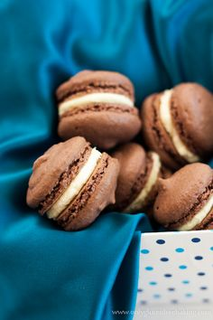 Chocolate Macarons - Naturally Gluten Free  - Sally's Only Gluten Free Baking