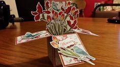 Card in a Box -  Teena Thompson (Alberta, Canada)